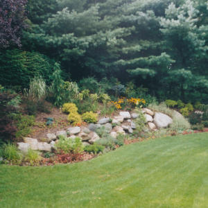 Oyster bay cove landscaping