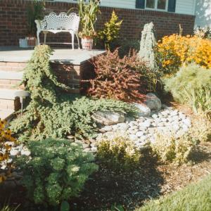 Plant Design Long Island